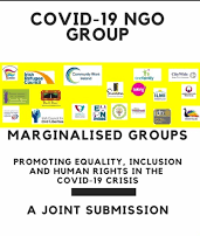 COVID-19 NGO Group –  A Joint Submission