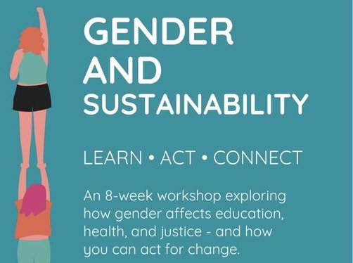 NCCWN Ronanstown WCDP – Gender and Sustainability Learn Act Connect